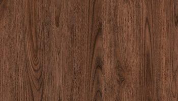4627-europe-chestnut-new_renk_g309_1183x1000_Imuy4mC2